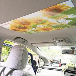 車内の天井に簡単装着
