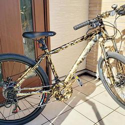 自転車のフレームも斬新なカラーに