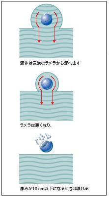 coating200812-2.JPG