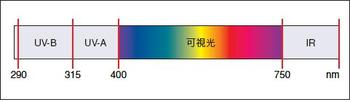 coating200902-2.JPG